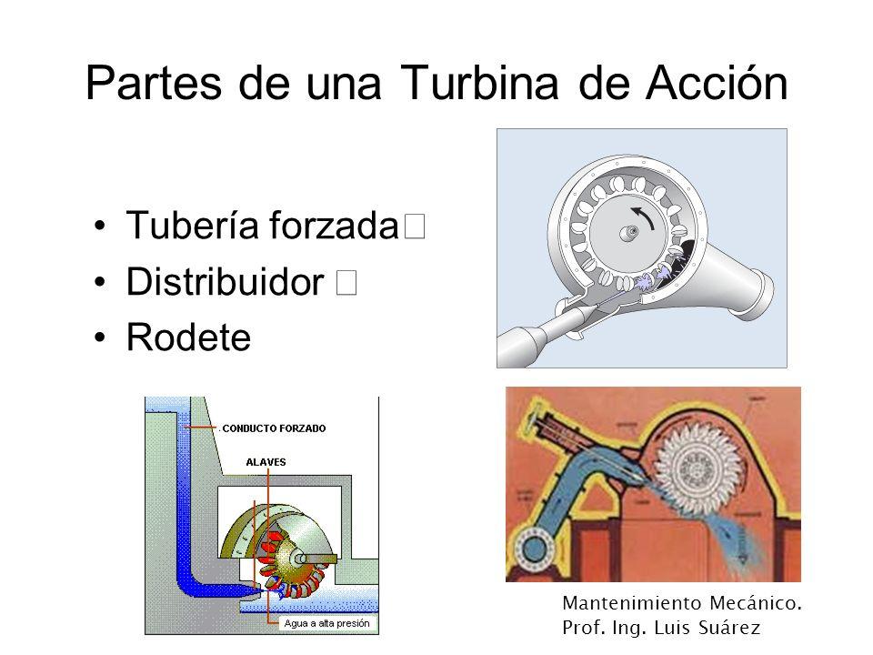 Mantenimiento Mecánico. Prof. Ing. Luis Suárez Partes de una Turbina de Acción Tubería forzada‡ Distribuidor ‡ Rodete