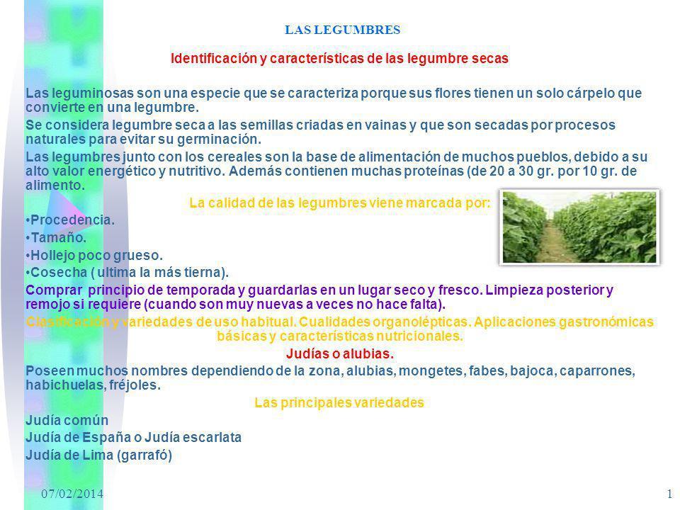 07/02/2014 1 LAS LEGUMBRES Identificación y características de las legumbre secas Las leguminosas son una especie que se caracteriza porque sus flores
