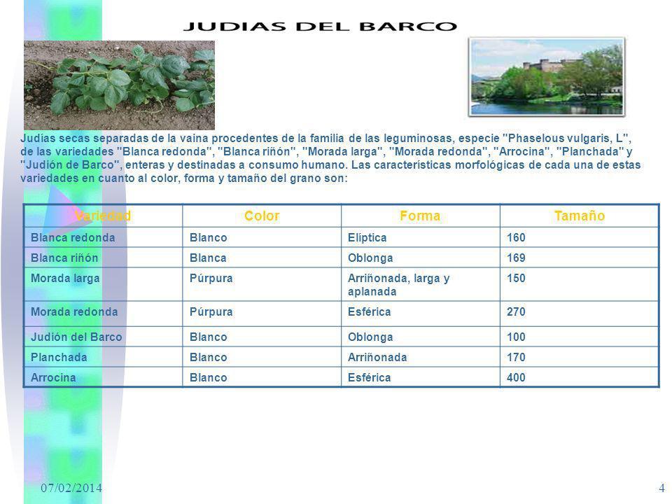 07/02/2014 4 Judías secas separadas de la vaina procedentes de la familia de las leguminosas, especie