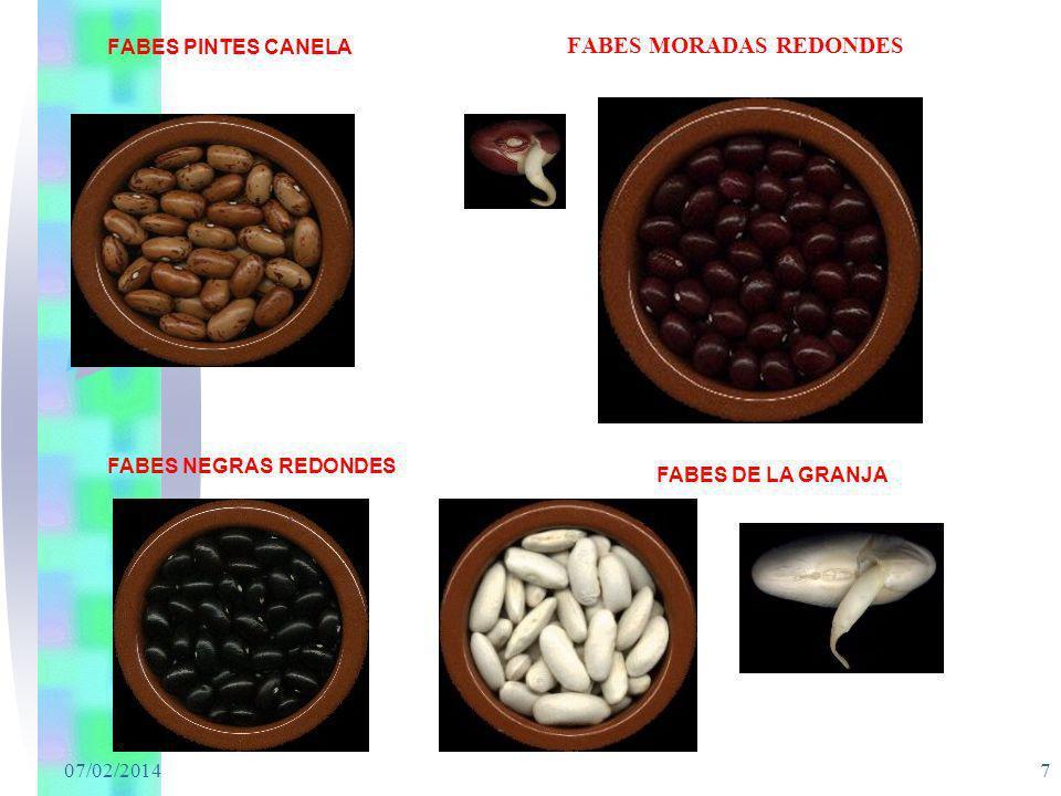 07/02/2014 7 FABES MORADAS REDONDES FABES PINTES CANELA FABES NEGRAS REDONDES FABES DE LA GRANJA