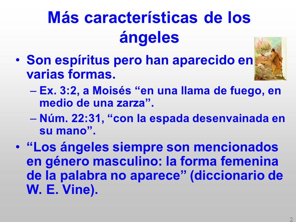 3 Más características de los ángeles Poetas y artistas pintan ángeles como mujeres con alas; Eva comiendo manzana; tres magos; Jesús como alto, rubio, con cabello largo como mujer.