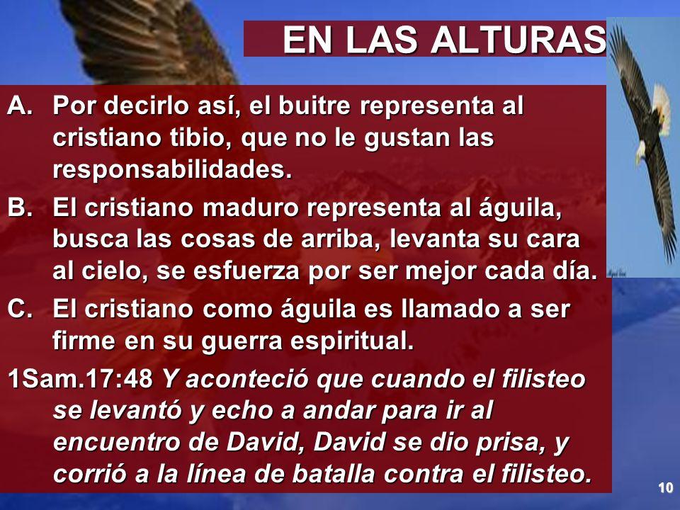 10 EN LAS ALTURAS A.Por decirlo así, el buitre representa al cristiano tibio, que no le gustan las responsabilidades. B.El cristiano maduro representa