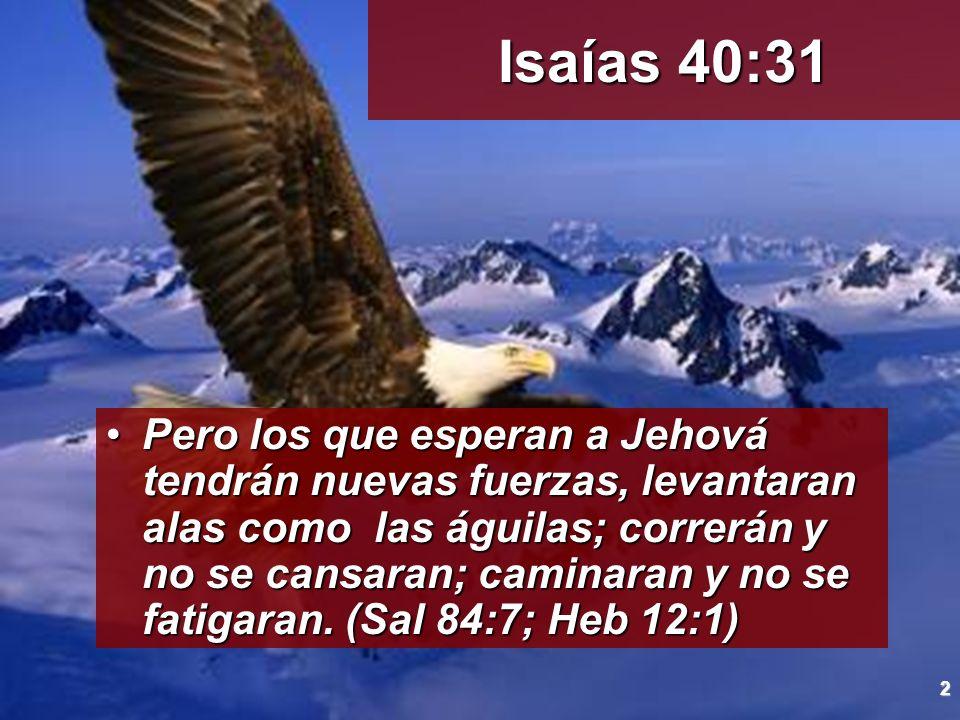 2 Pero los que esperan a Jehová tendrán nuevas fuerzas, levantaran alas como las águilas; correrán y no se cansaran; caminaran y no se fatigaran. (Sal