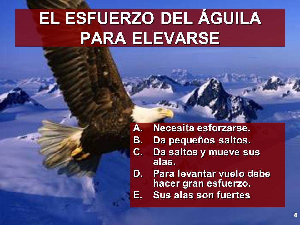 5 EL ÁGUILA MUEVE SUS ALAS CON PRECISIÓN A.El águila sabe cuando ya no hay que seguir batiendo las alas.