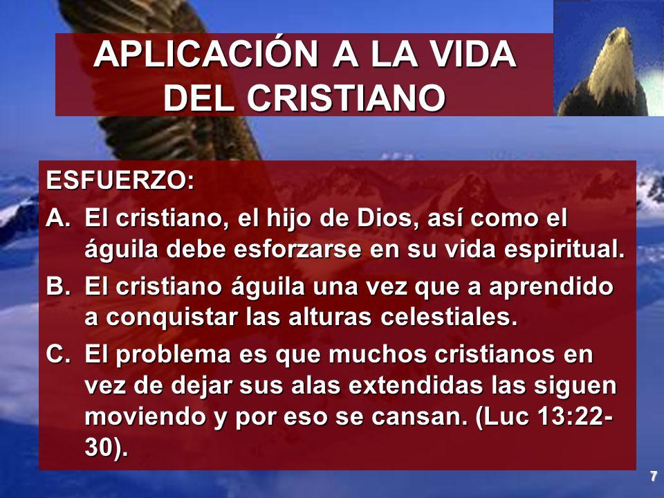 7 APLICACIÓN A LA VIDA DEL CRISTIANO ESFUERZO: A.El cristiano, el hijo de Dios, así como el águila debe esforzarse en su vida espiritual. B.El cristia