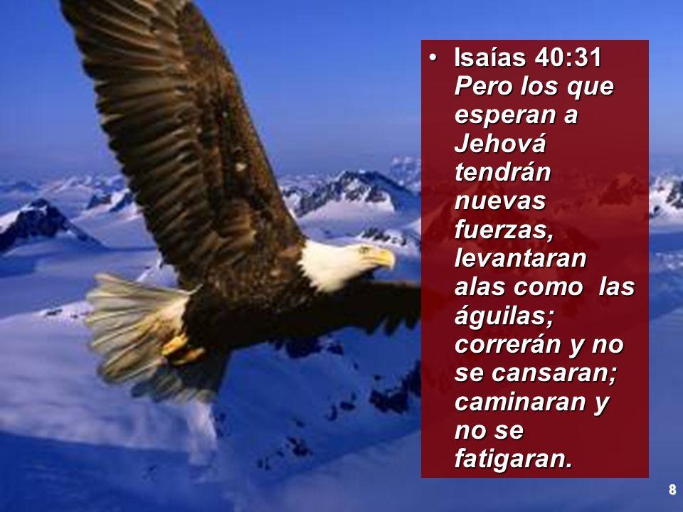 8 Isaías 40:31 Pero los que esperan a Jehová tendrán nuevas fuerzas, levantaran alas como las águilas; correrán y no se cansaran; caminaran y no se fa
