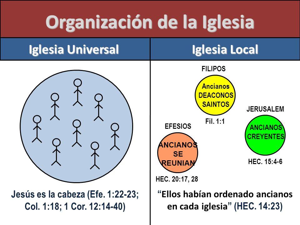 Organización de la Iglesia Jesús es la cabeza (Efe. 1:22-23; Col. 1:18; 1 Cor. 12:14-40) Ellos habían ordenado ancianos en cada iglesia (HEC. 14:23) I