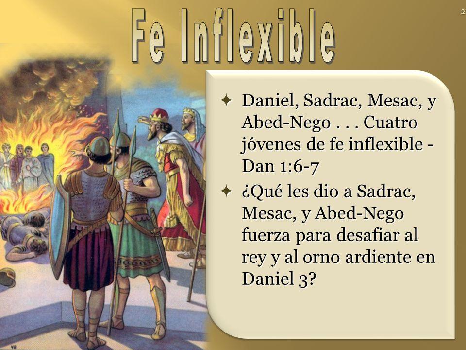 Daniel, Sadrac, Mesac, y Abed-Nego...