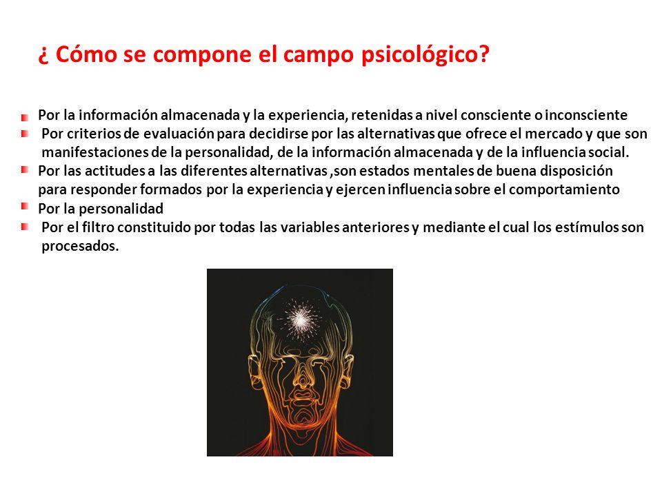 ¿ Cómo se compone el campo psicológico? Por la información almacenada y la experiencia, retenidas a nivel consciente o inconsciente Por criterios de e