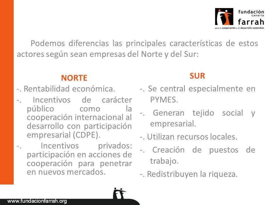www.fundacionfarrah.org Podemos diferencias las principales características de estos actores según sean empresas del Norte y del Sur: NORTE -. Rentabi