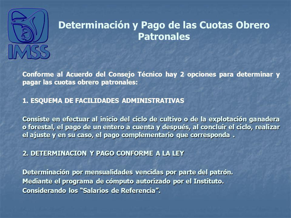 Determinación y Pago de las Cuotas Obrero Patronales Conforme al Acuerdo del Consejo Técnico hay 2 opciones para determinar y pagar las cuotas obrero patronales: 1.