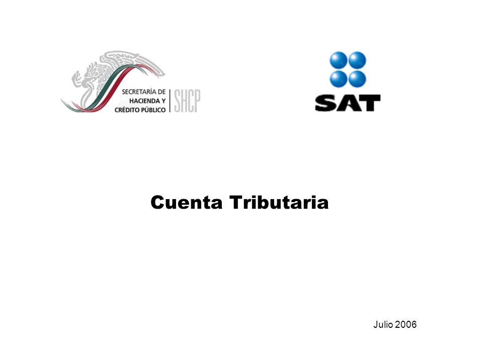 Cuenta Tributaria Julio 2006