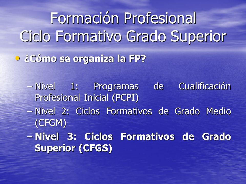 Formación Profesional Ciclo Formativo Grado Superior ¿Cómo se organiza la FP? ¿Cómo se organiza la FP? –Nivel 1: Programas de Cualificación Profesiona