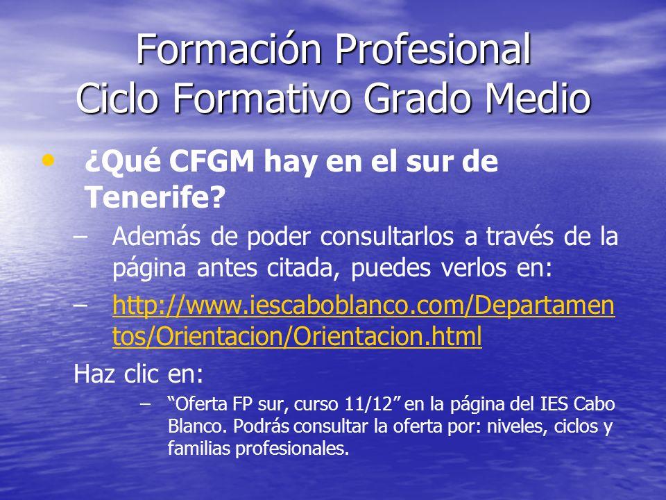 Formación Profesional Ciclo Formativo Grado Medio ¿Qué CFGM hay en el sur de Tenerife? – –Además de poder consultarlos a través de la página antes cit