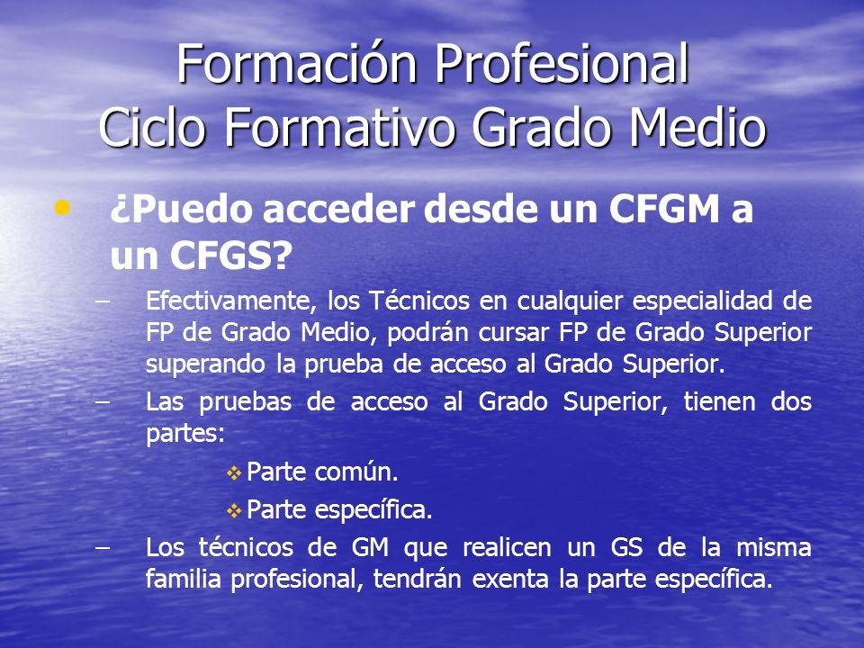Formación Profesional Ciclo Formativo Grado Medio ¿Puedo acceder desde un CFGM a un CFGS? – –Efectivamente, los Técnicos en cualquier especialidad de