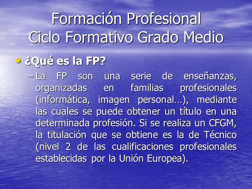 Formación Profesional Ciclo Formativo Grado Medio ¿Qué es la FP? ¿Qué es la FP? –La FP son una serie de enseñanzas, organizadas en familias profesiona