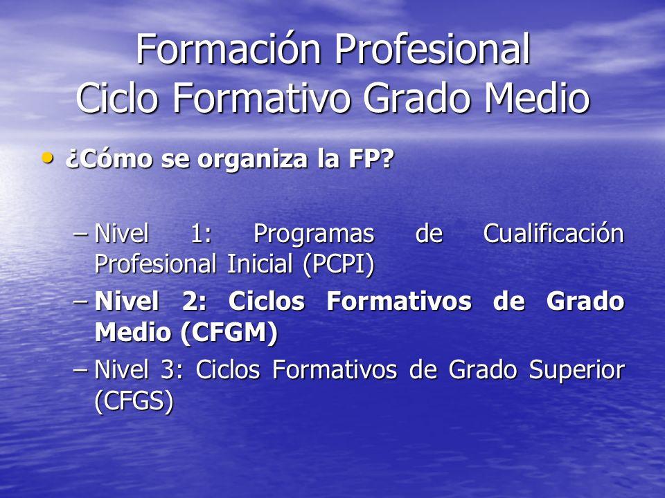 Formación Profesional Ciclo Formativo Grado Medio ¿Cómo se organiza la FP? ¿Cómo se organiza la FP? –Nivel 1: Programas de Cualificación Profesional I