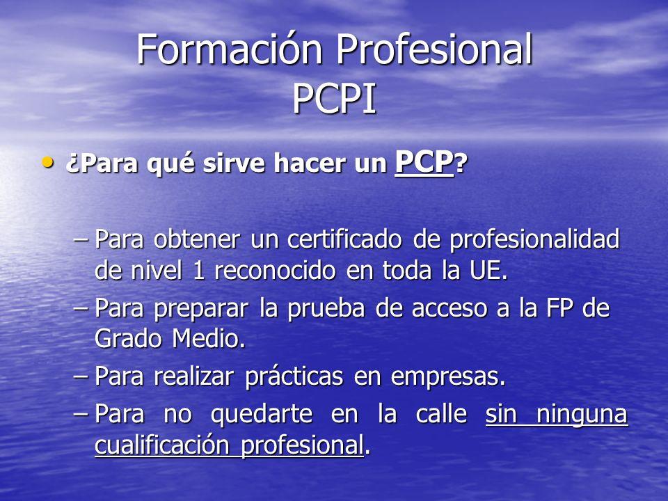 Formación Profesional PCPI ¿Para qué sirve hacer un PCP ? ¿Para qué sirve hacer un PCP ? –Para obtener un certificado de profesionalidad de nivel 1 re
