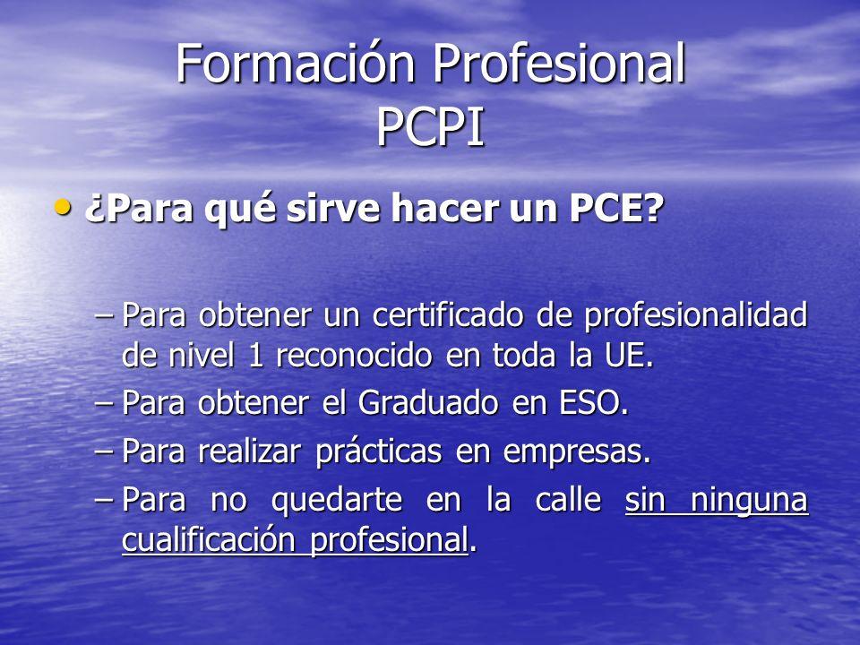 Formación Profesional PCPI ¿Para qué sirve hacer un PCE? ¿Para qué sirve hacer un PCE? –Para obtener un certificado de profesionalidad de nivel 1 reco