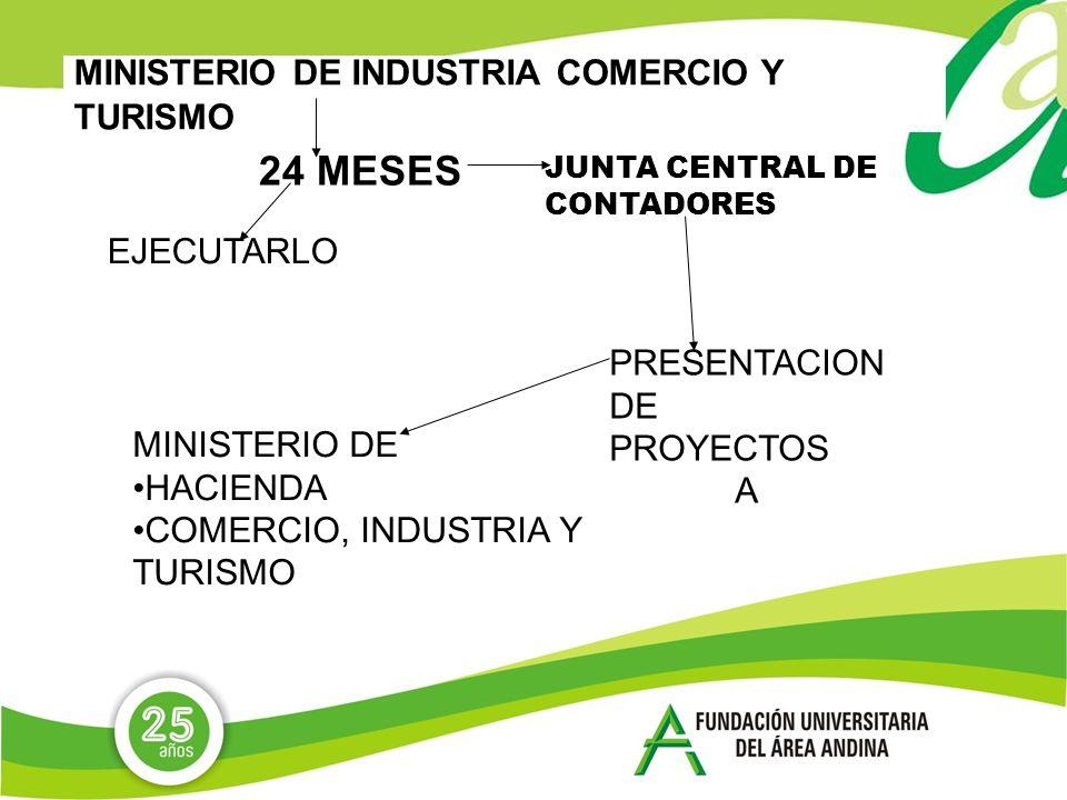 MINISTERIO DE INDUSTRIA COMERCIO Y TURISMO 24 MESES EJECUTARLO JUNTA CENTRAL DE CONTADORES PRESENTACION DE PROYECTOS A MINISTERIO DE HACIENDA COMERCIO