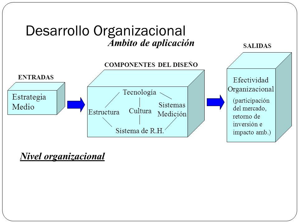 Desarrollo Organizacional Ambito de aplicación Nivel organizacional Estrategia Medio Tecnología Estructura Cultura Sistemas Medición Sistema de R.H.