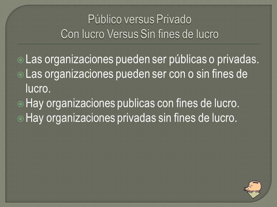 Las organizaciones pueden ser públicas o privadas. Las organizaciones pueden ser con o sin fines de lucro. Hay organizaciones publicas con fines de lu