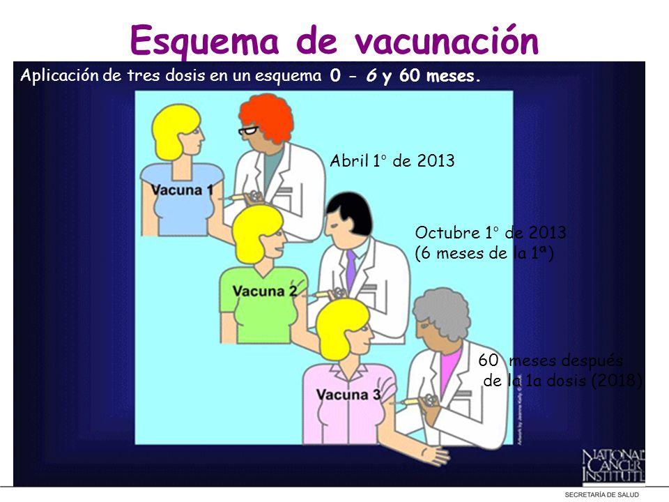 Esquema de vacunación Aplicación de tres dosis en un esquema 0 - 6 y 60 meses. Abril 1° de 2013 Octubre 1° de 2013 (6 meses de la 1ª) 60 meses después