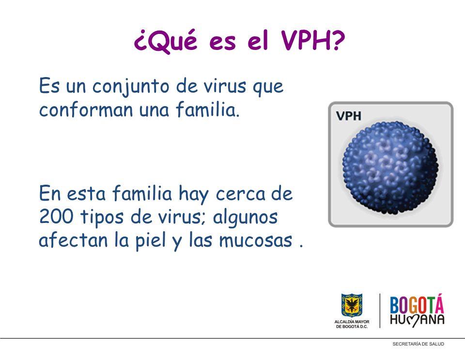¿Qué es el VPH? Es un conjunto de virus que conforman una familia. En esta familia hay cerca de 200 tipos de virus; algunos afectan la piel y las muco