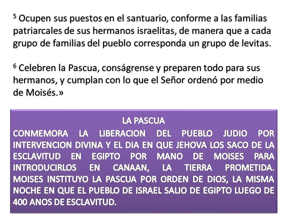 5 Ocupen sus puestos en el santuario, conforme a las familias patriarcales de sus hermanos israelitas, de manera que a cada grupo de familias del pueb
