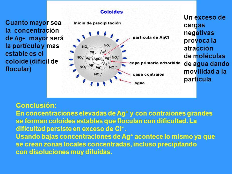 Cuanto mayor sea la concentración de Ag+ mayor será la partícula y mas estable es el coloide (difícil de flocular) Un exceso de cargas negativas provo