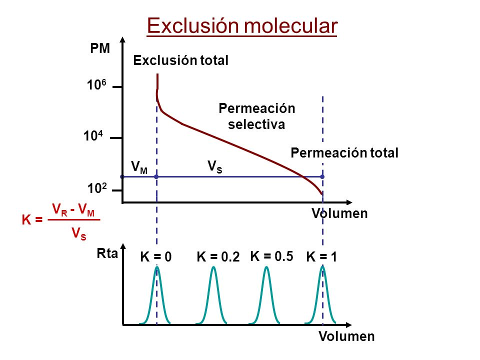 K = 0.2 K = 0.5 Rta Volumen VSVS VMVM Exclusión total Permeación selectiva Permeación total 10 2 10 4 10 6 Volumen PM V R - V M V S K = K = 0 K = 1 Ex
