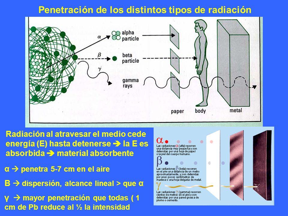 Penetración de los distintos tipos de radiación Radiación al atravesar el medio cede energía (E) hasta detenerse la E es absorbida material absorbente