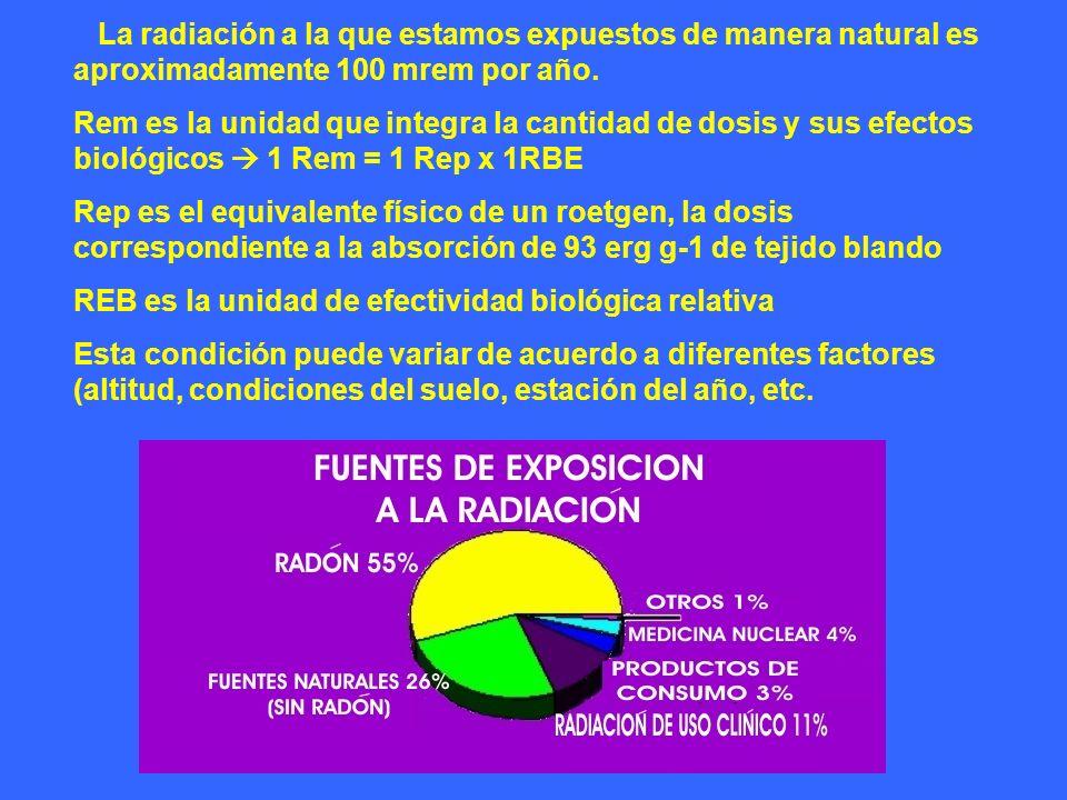 La radiación a la que estamos expuestos de manera natural es aproximadamente 100 mrem por año. Rem es la unidad que integra la cantidad de dosis y sus