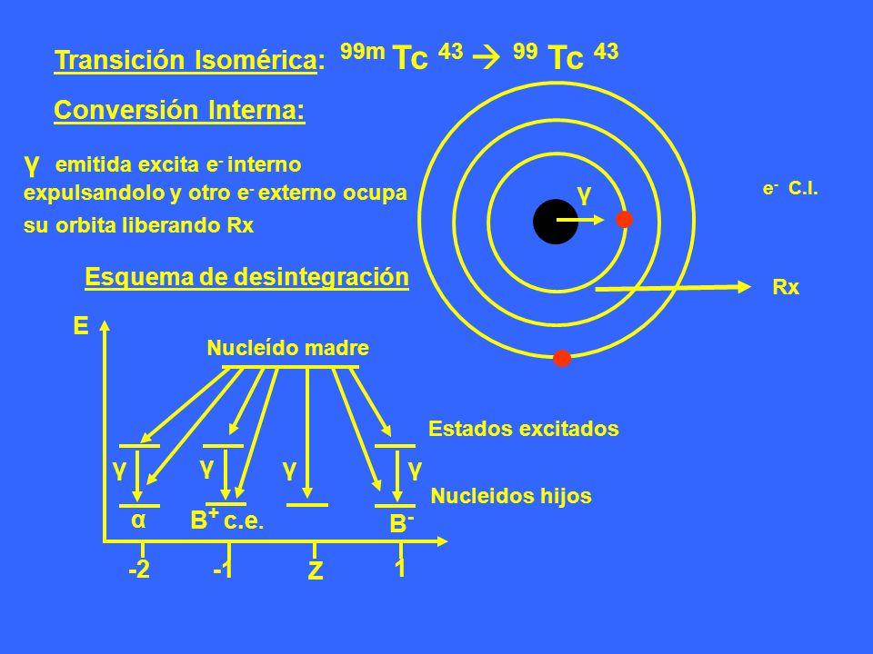 Esquema de desintegración Z -2 1 E Nucleído madre α γ γ Β + c.e. γ γ Β-Β- Transición Isomérica: 99m Tc 43 99 Tc 43 Conversión Interna: γ e - C.I. Rx E