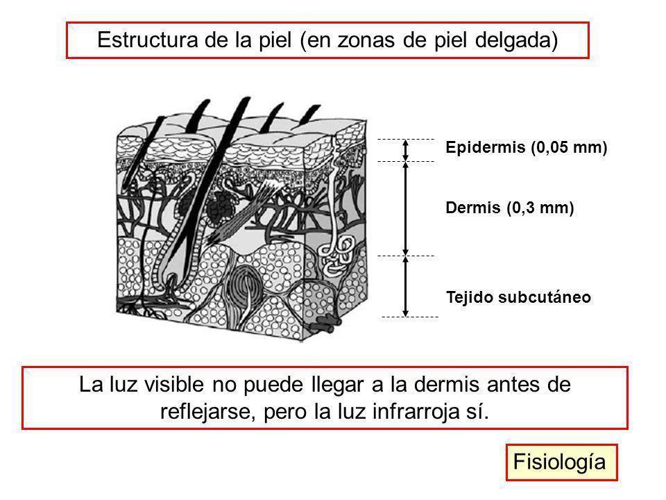 Epidermis (0,05 mm) Dermis (0,3 mm) Tejido subcutáneo Estructura de la piel (en zonas de piel delgada) La luz visible no puede llegar a la dermis ante