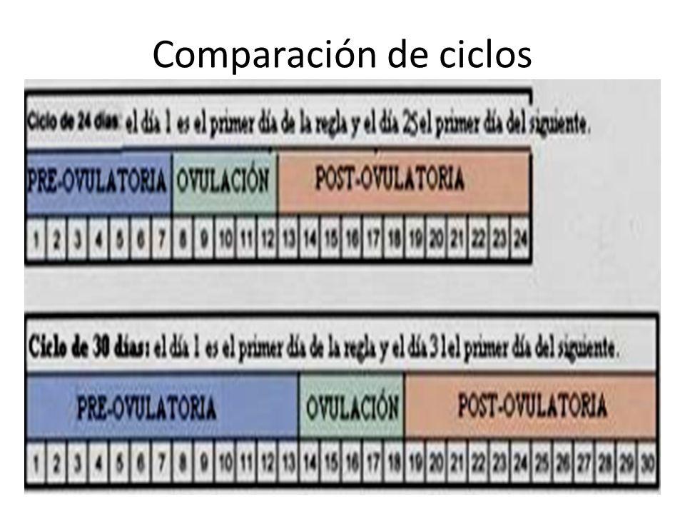 Comparación de ciclos