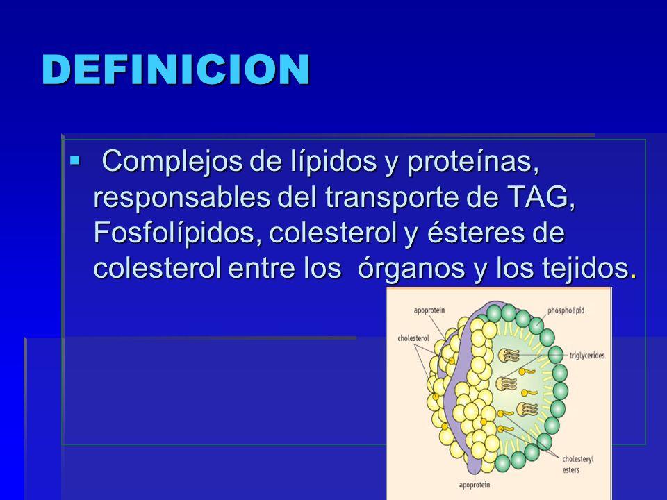 DEFINICION Complejos de lípidos y proteínas, responsables del transporte de TAG, Fosfolípidos, colesterol y ésteres de colesterol entre los órganos y