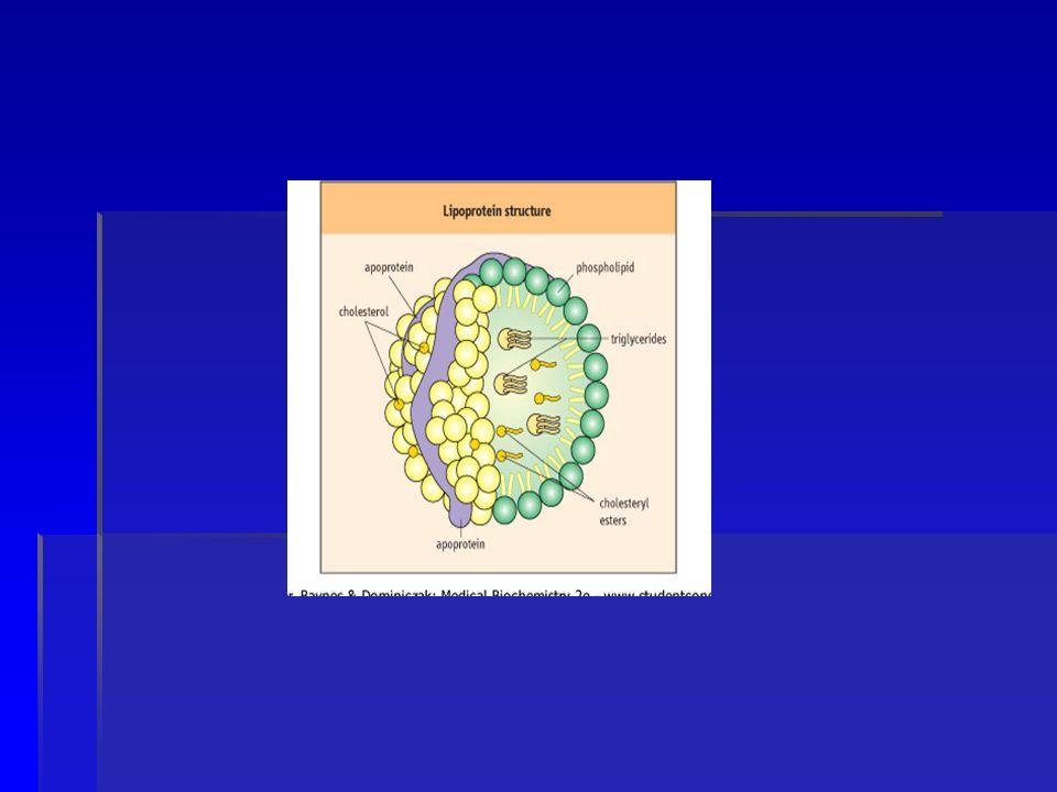 LCAT: LCAT: asoc.HDL. Esterifica colesterol EC. Se activa por Apo AI.