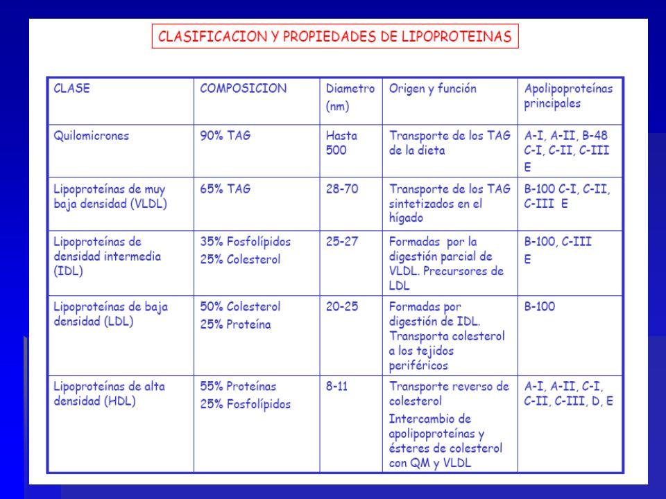 Hombres Deseable : 40-50 mg/dl Bajo : < de 35 mg/dl Mujeres Deseable : 50-60 mg/dl Bajo : < de 35 mg/dl Niveles de HDL
