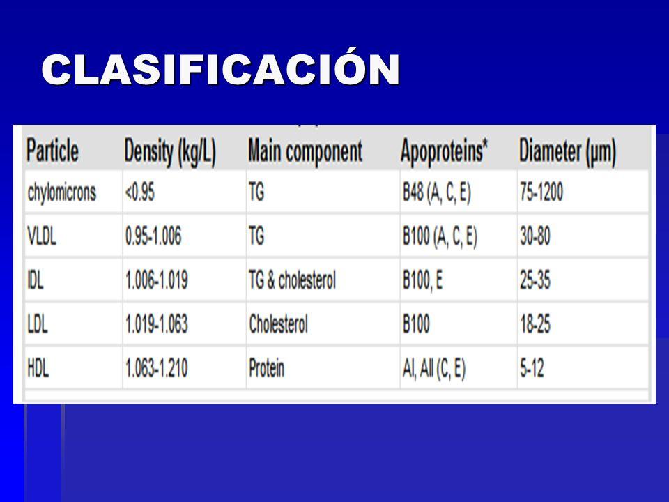 HDL Transportan colesterol de los tejidos al hígado.
