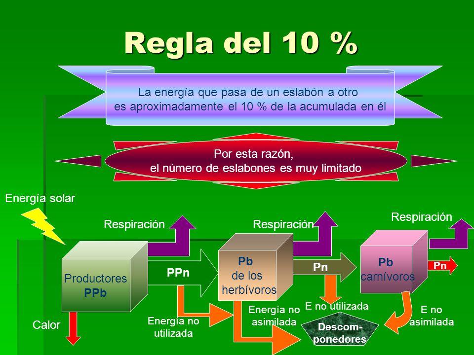 Regla del 10 % La energía que pasa de un eslabón a otro es aproximadamente el 10 % de la acumulada en él Por esta razón, el número de eslabones es muy