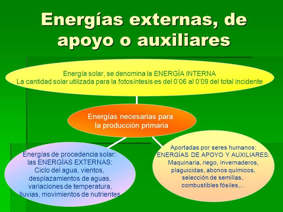 Energías externas, de apoyo o auxiliares Energías necesarias para la producción primaria Energía solar, se denomina la ENERGÍA INTERNA La cantidad sol