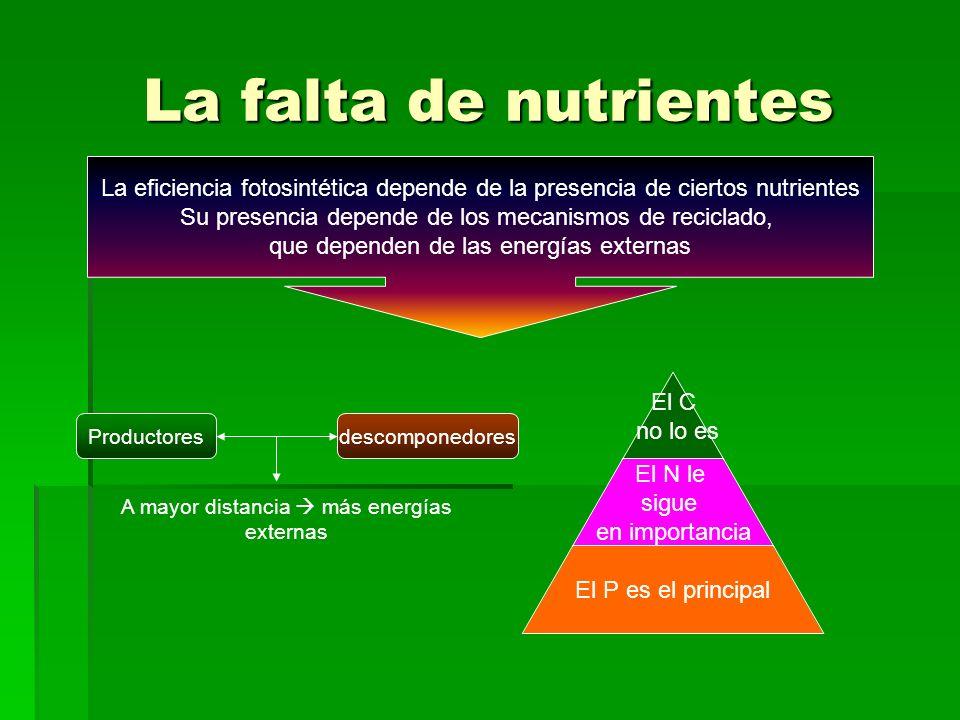 La falta de nutrientes La eficiencia fotosintética depende de la presencia de ciertos nutrientes Su presencia depende de los mecanismos de reciclado, que dependen de las energías externas El C no lo es El N le sigue en importancia El P es el principal Productoresdescomponedores A mayor distancia más energías externas