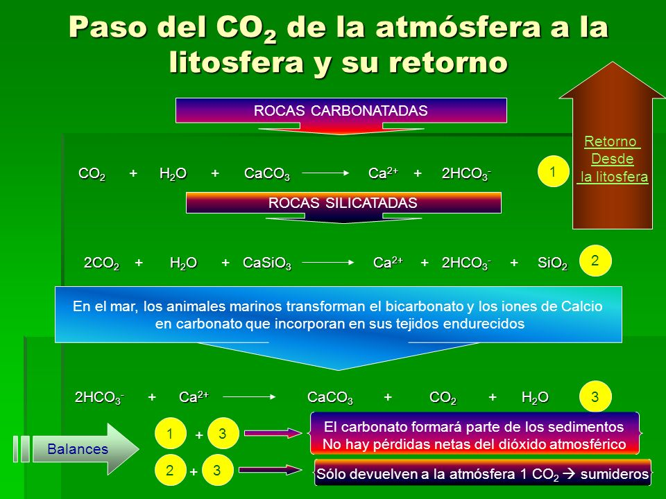 Paso del CO 2 de la atmósfera a la litosfera y su retorno ROCAS CARBONATADAS CO2 +H2O+CaCO3Ca2+ +2HCO3- 1 ROCAS SILICATADAS 2CO2 +H2OCaSiO3 +2HCO3-Ca2+ ++SiO2 2 En el mar, los animales marinos transforman el bicarbonato y los iones de Calcio en carbonato que incorporan en sus tejidos endurecidos 2HCO3- +Ca2+CaCO3 +CO2 +H2O 3 Balances 1 + 3 El carbonato formará parte de los sedimentos No hay pérdidas netas del dióxido atmosférico 2 + 3 Sólo devuelven a la atmósfera 1 CO 2 sumideros Retorno Desde la litosfera