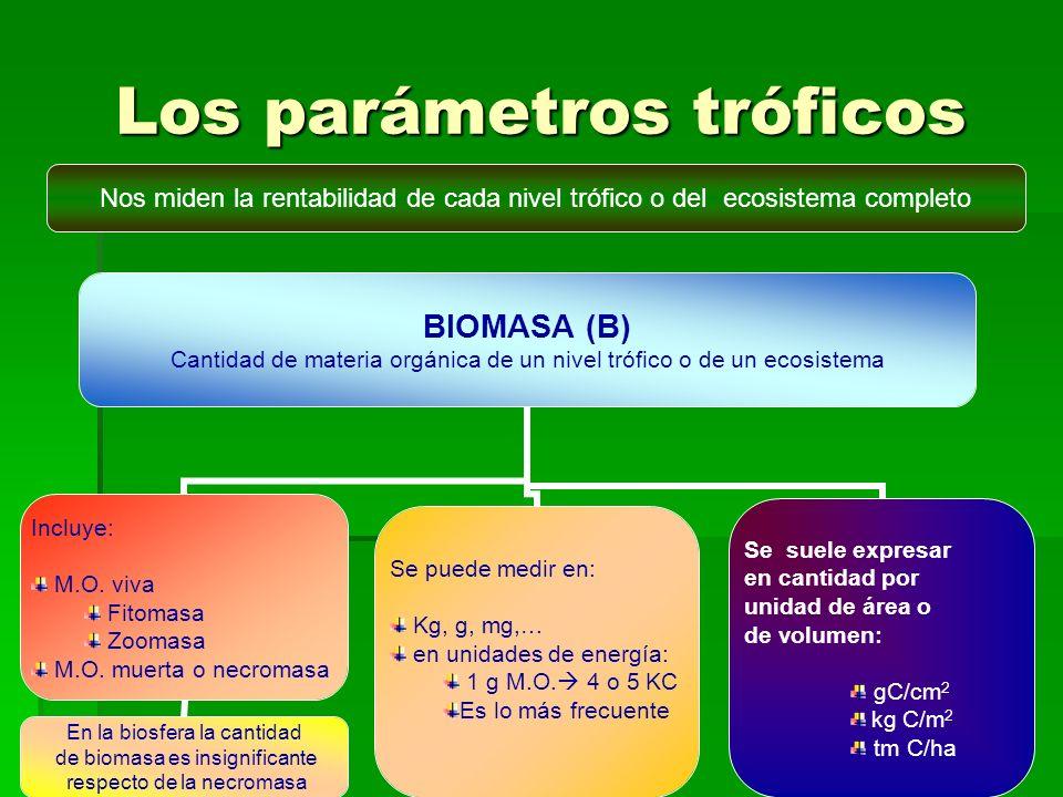 Los parámetros tróficos Nos miden la rentabilidad de cada nivel trófico o del ecosistema completo BIOMASA (B) Cantidad de materia orgánica de un nivel trófico o de un ecosistema Incluye: M.O.