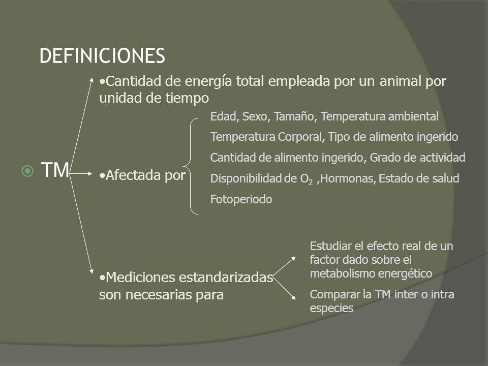DEFINICIONES TM Cantidad de energía total empleada por un animal por unidad de tiempo Afectada por Mediciones estandarizadas son necesarias para Edad,