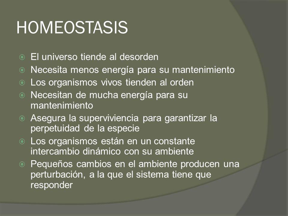 HOMEOSTASIS El universo tiende al desorden Necesita menos energía para su mantenimiento Los organismos vivos tienden al orden Necesitan de mucha energ