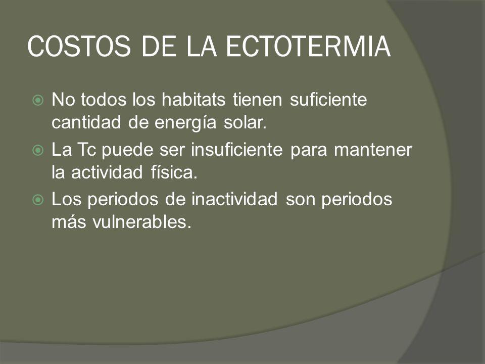 COSTOS DE LA ECTOTERMIA No todos los habitats tienen suficiente cantidad de energía solar. La Tc puede ser insuficiente para mantener la actividad fís