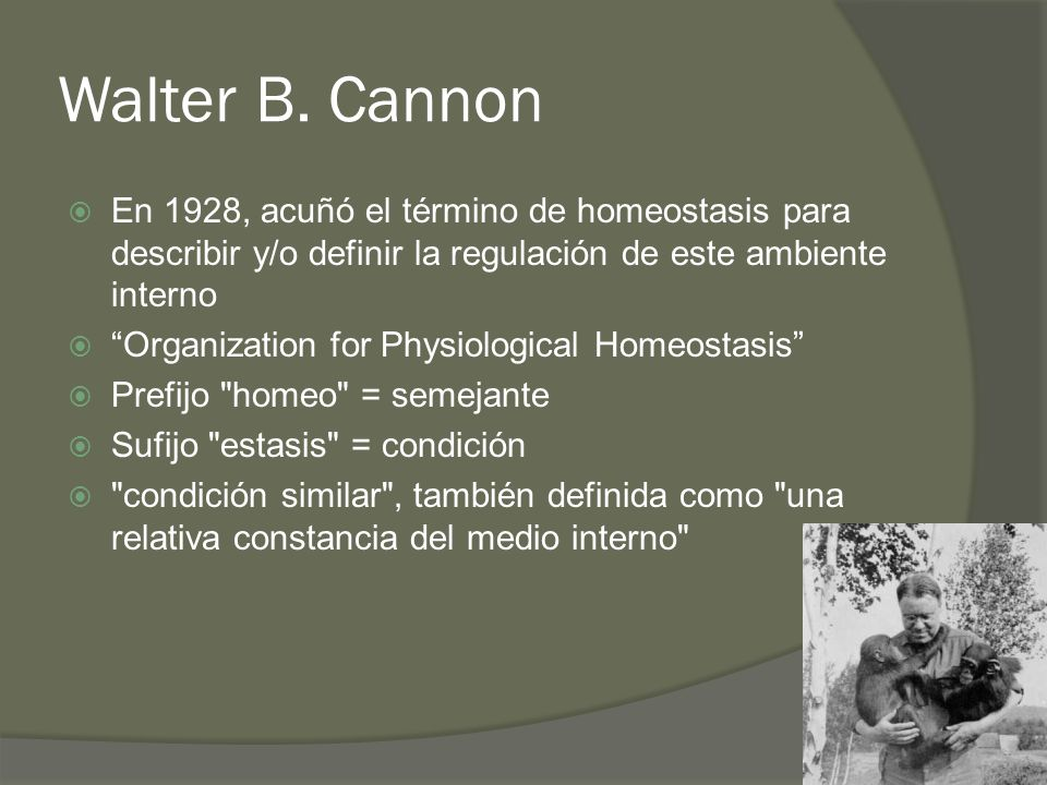 Walter B. Cannon En 1928, acuñó el término de homeostasis para describir y/o definir la regulación de este ambiente interno Organization for Physiolog