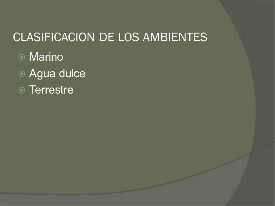 CLASIFICACION DE LOS AMBIENTES Marino Agua dulce Terrestre